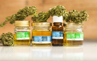 Cannabidiol Oils…Here's What You Need to Know